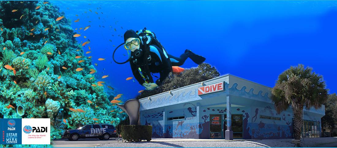 Dive Shop St Augustine Scuba Diving Jacksonville Fl